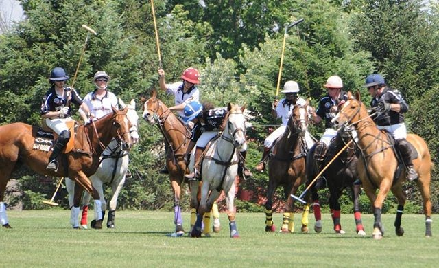 An Afternoon at the PoloFields!
